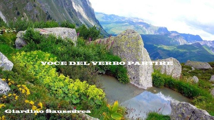 VEDERE IN VAL D'AOSTA IL GIARDINO SAUSSURREA