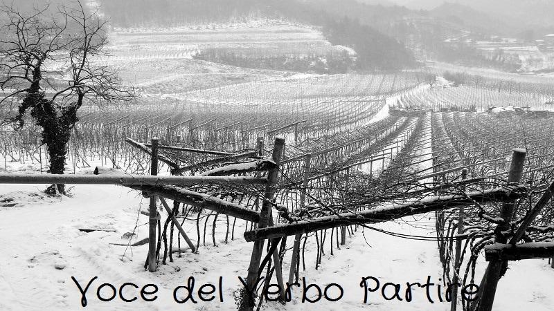 Mercatini di Natale tra i borghi del Trentino