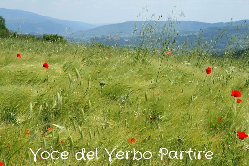 Cosa vedere in Casentino: itinerario in moto tra borghi e pievi