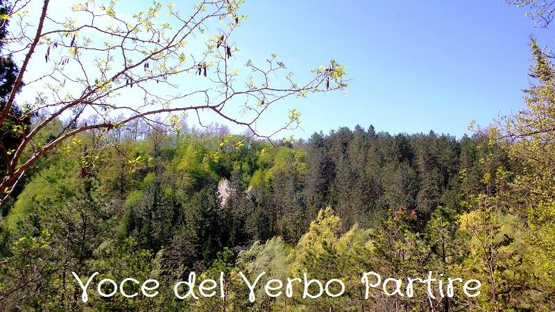 Cosa vedere a Sarsina: itinerario nel centro storico e nei dintorni
