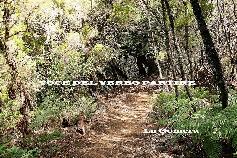 AVERE CURA DEL MONDO