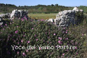 Salento insolito: Uggiano la Chiesa, un patrimonio da scoprire nei dintorni di Otranto