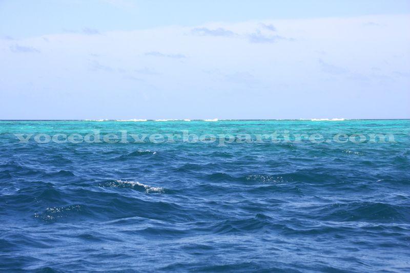 FARE SNORKELING CON LE MANTE ALLE MALDIVE