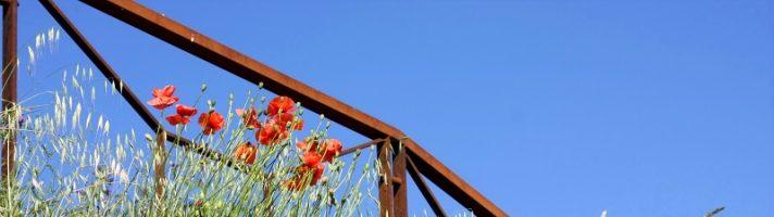 Cosa vedere in Romagna in un giorno: itinerario tra i borghi della Valmarecchia