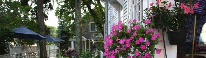 Cosa vedere in Massachusetts in due giorni: Chatham, Concord, Salem (partendo da New York)