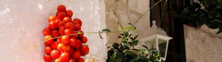 Dove mangiare in Valle d'Itria: tipicità pugliesi