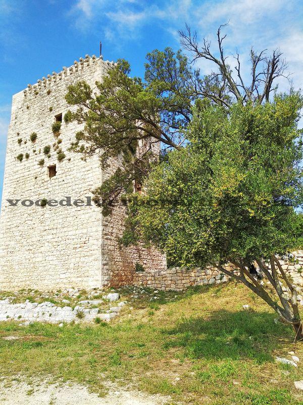TREKKING NEI DINTORNI DI BARI AL VILLAGGIO DI CASTIGLIONE
