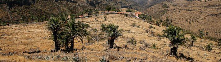 Come organizzare un viaggio alle Canarie fai da te: Tenerife e La Gomera