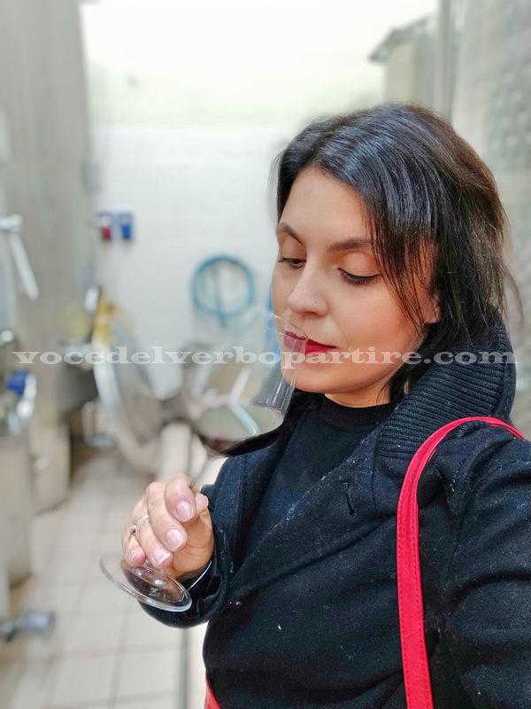 COSA VEDERE VICINO FOGGIA CANTINE