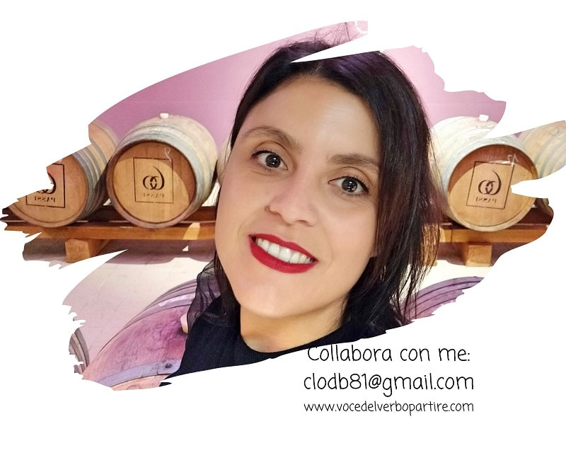 COLLABORA CON UN BLOGGER PROFESSIONISTA