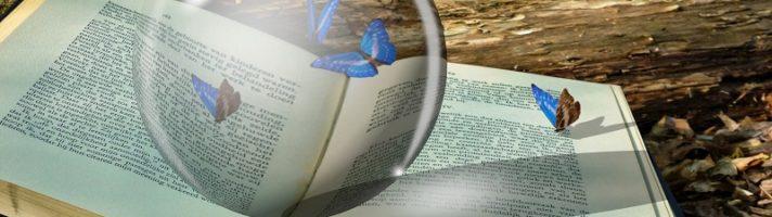 Favole per bambini da leggere e colorare: racconti per sognare da 0 a 100 anni